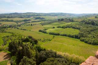 Tuscany Wine Trail - Hills
