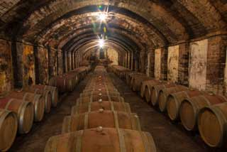 Tuscany Wine Trail - Barrels